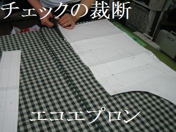 Pm_003