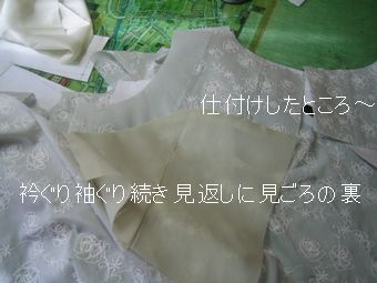 Am_008